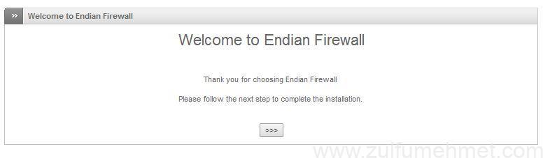 endian firewall kurulum ve yapılanması